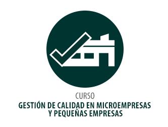 CURSO GESTIÓN DE CALIDAD EN MICROEMPRESAS Y PEQUEÑAS EMPRESAS