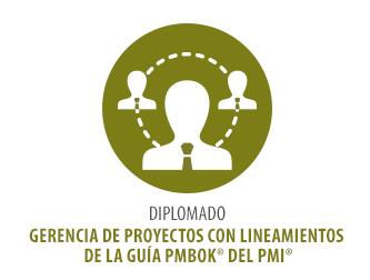 DIPLOMADO GERENCIA DE PROYECTOS CON LINEAMIENTOS DE LA GUÍA PMBOK® DEL PMI®