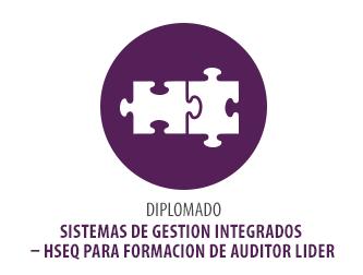 DIPLOMADO SISTEMAS DE GESTIÓN INTEGRADOS HSEQ PARA FORMACIÓN DE AUDITOR LÍDER