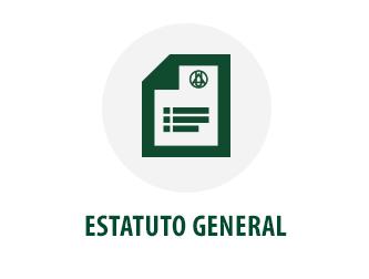 Estatuto General