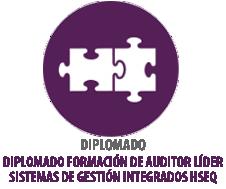 DIPLOMADO FORMACIÓN DE AUDITOR LÍDER SISTEMAS DE GESTIÓN INTEGRADOS HSEQ