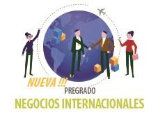NEGOCIOS INTERNACIONALES  No. Registro SNIES 107674